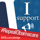 Repeal Obamacare, Stand Up for Small Business