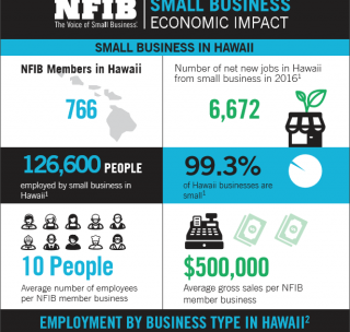 Hawaii Small Business in Facts and Figures