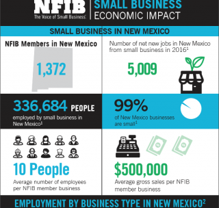 New Mexico Small Business in Facts and Figures