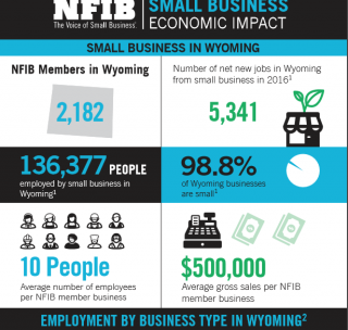 Wyoming Small Business in Facts and Figures