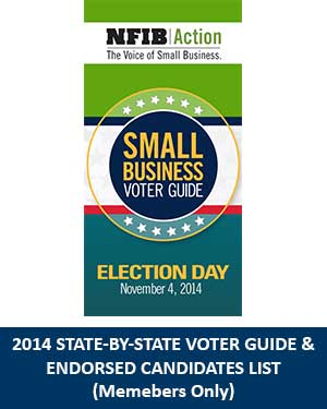 voter-guide-cover-blurb